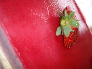 imgp2972 La Mousse aux Fruits Rouges