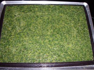 imgp3350 Roulé aux Epinards, Saumon et boursin