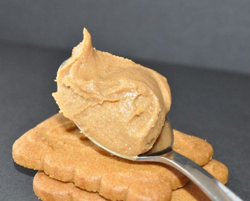 pate a speculoos maison