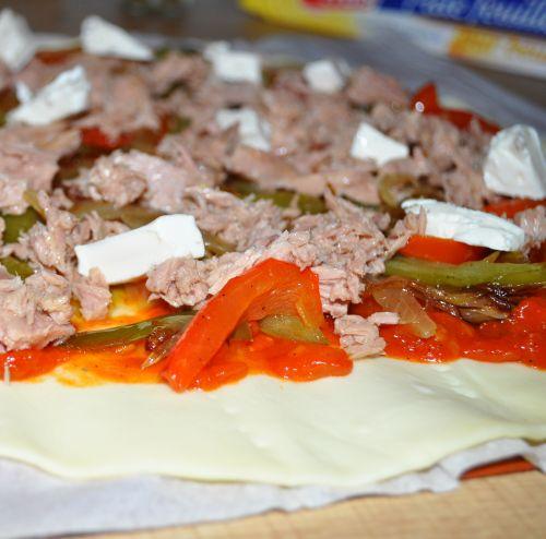DSC 0070 Feuilleté aux légumes et thon