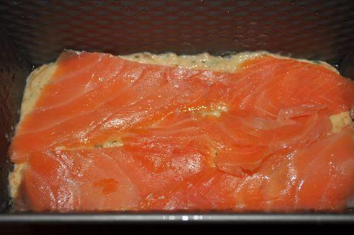 terine au saumon
